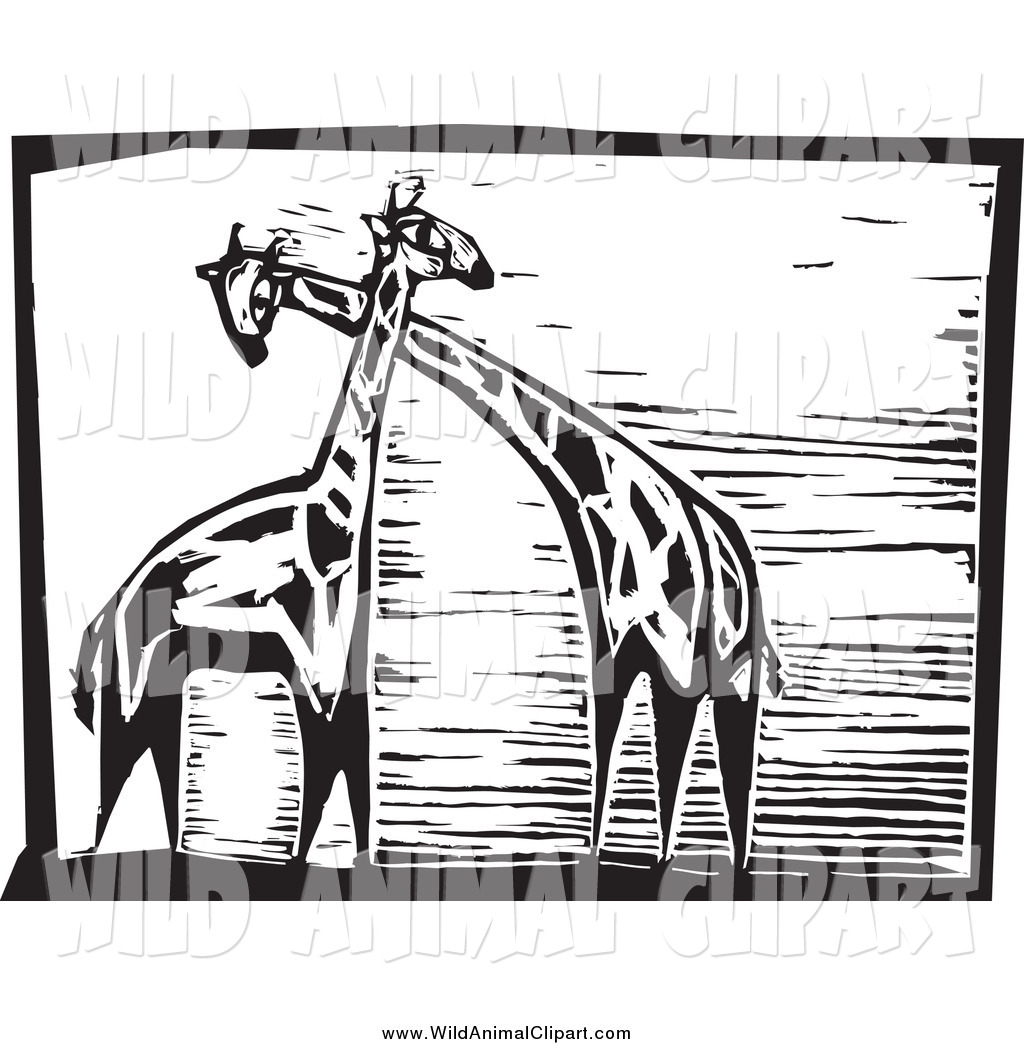 Clip Art of a Black and White Giraffes Woodcut by.