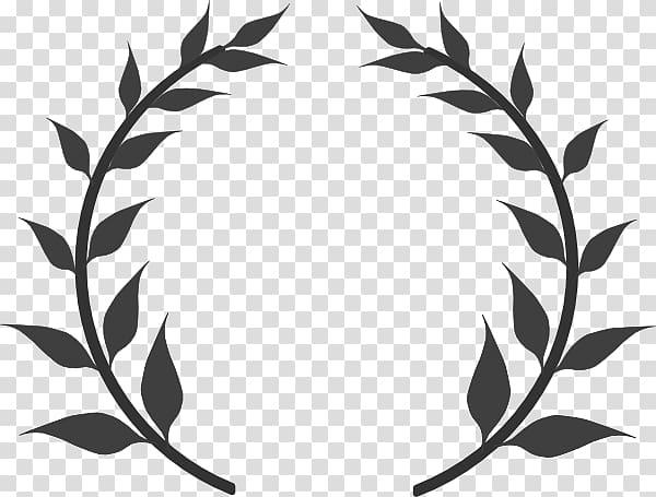 Olive branch Olive wreath Laurel wreath , Border Laurel.