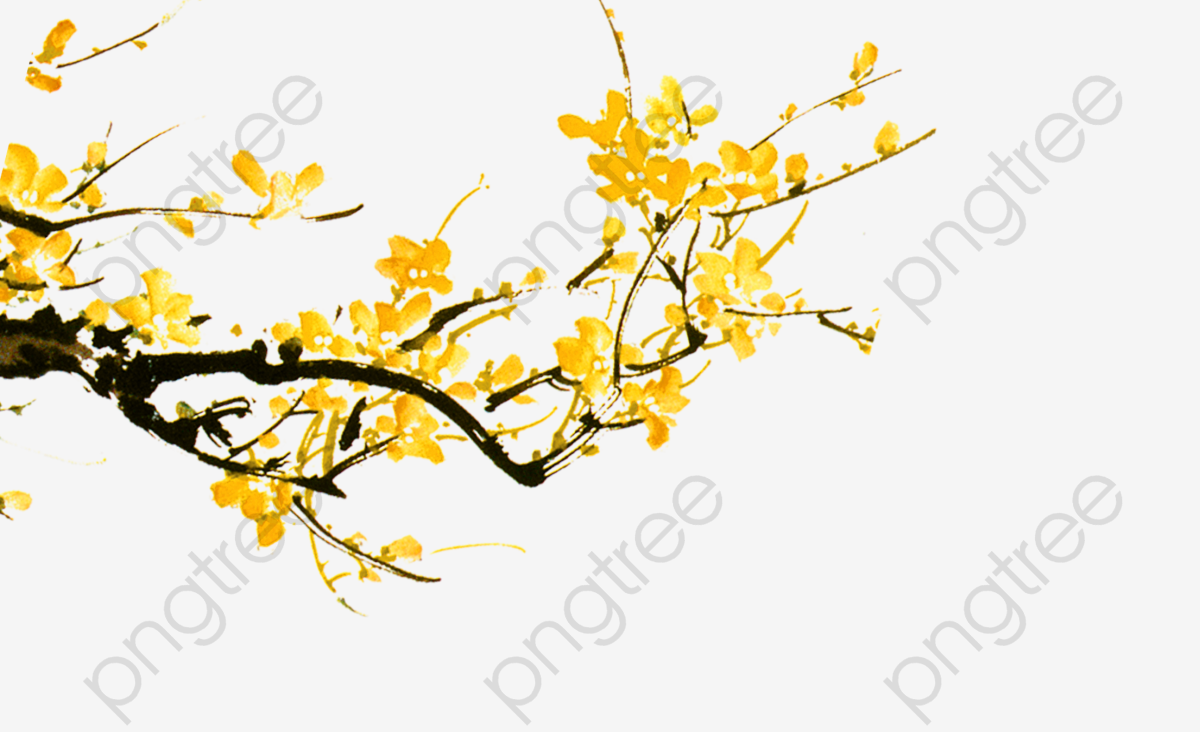 Yellow Flowers Branch, Branch Clipart, Yellow Flower, Flowers PNG.