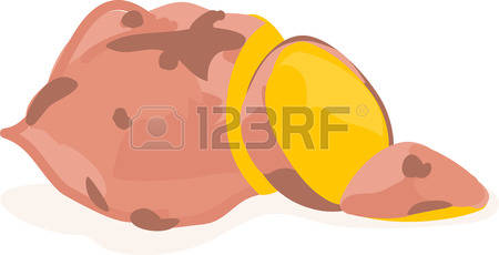 435 Yam Stock Vector Illustration And Royalty Free Yam Clipart.