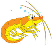 Zooplankton clipart 1 » Clipart Station.