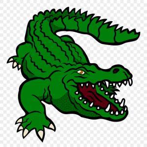 Txjjclipart Crocodile Coloured Clipart Of Crocodile Png.