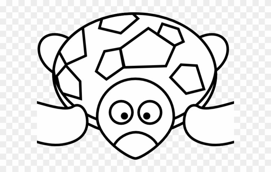Tortoise Clipart Black And White.
