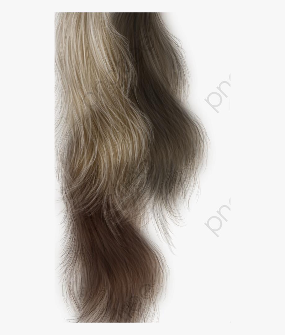 Grey Hair Clipart.