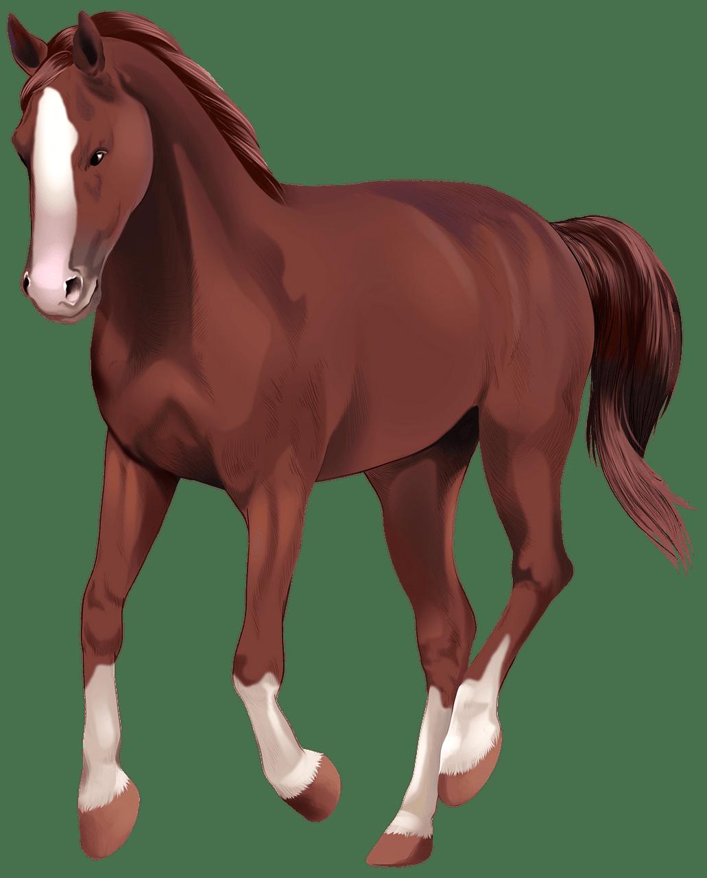 Cavalo Westfaliano clipart. Download grátis..