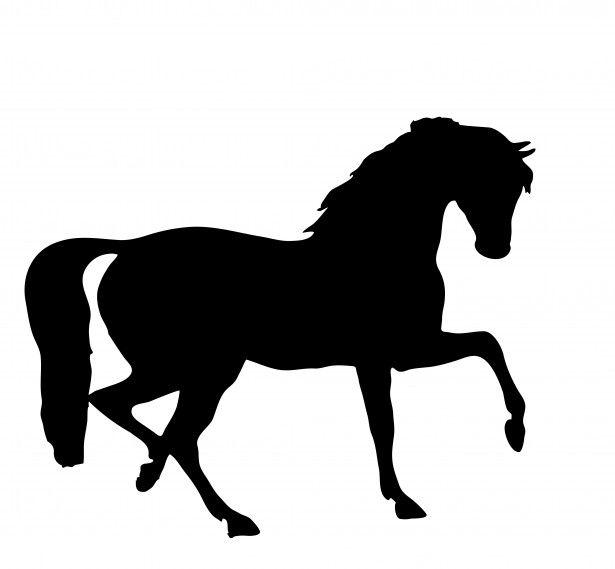 Horse Silhouette Clipart.