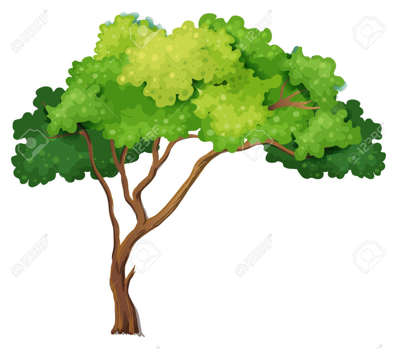 Illustration Of A Close Up Tree Royalty Free Cliparts, Vectors.