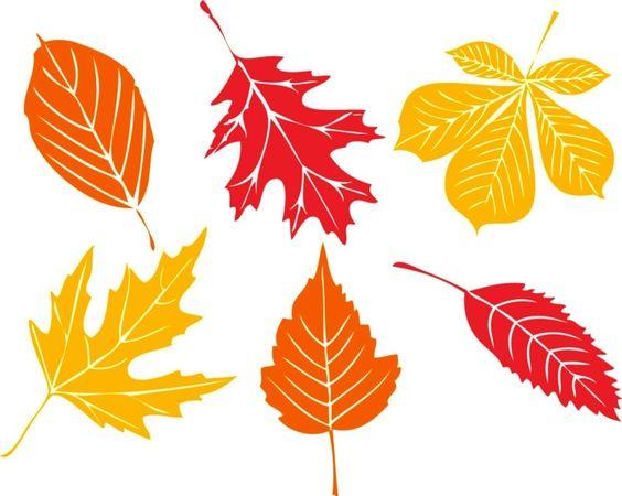 Blätter als Fensterbilder in herbstlichen Farben.