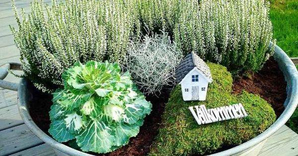 Décorer le jardin et la terrasse avec des plantes d'automne.