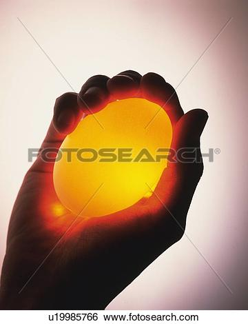 Stock Images of Yellow Egg in Right Hand, High Angle View, Close.