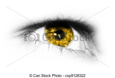 Clip Art of yellow Iris.
