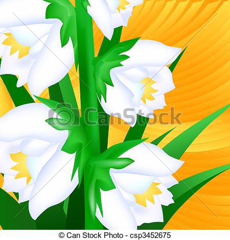 Stock Illustrations of Yucca Flowers Close.