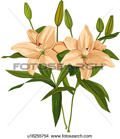 Clipart of fragrant, plant life, close.