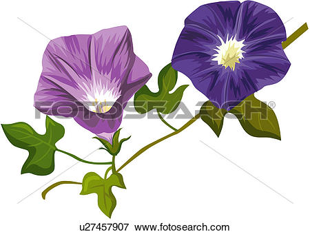 Clip Art of fragrant, plant life, close.