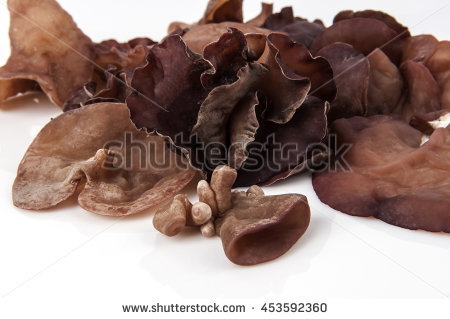 Wood Ear Fungus Stock Photos, Royalty.