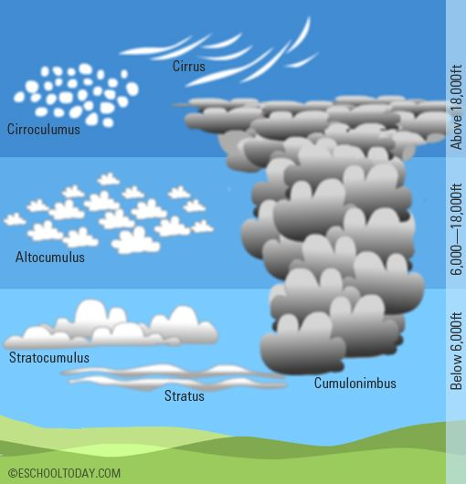 1000+ ideas about Cirrus Cloud on Pinterest.