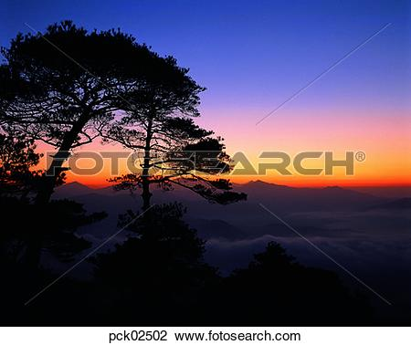 Stock Photo of scene, scenery, view, cloud, tree, red sky, sunset.