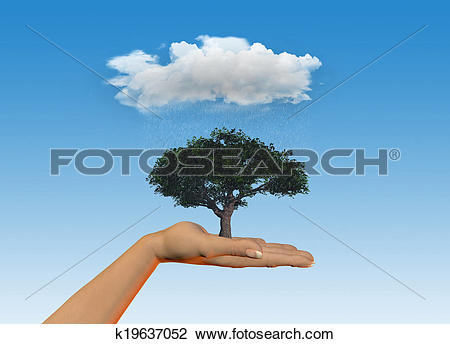 Clip Art of Hand holding tree under a rain cloud k19637052.