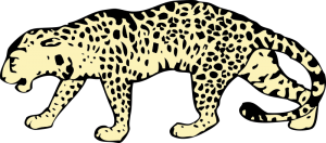 Clouded Leopard Clip Art Download.