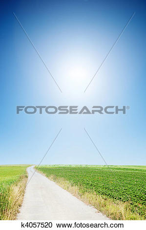 Stock Illustrations of country road with cloudless sunny sky.