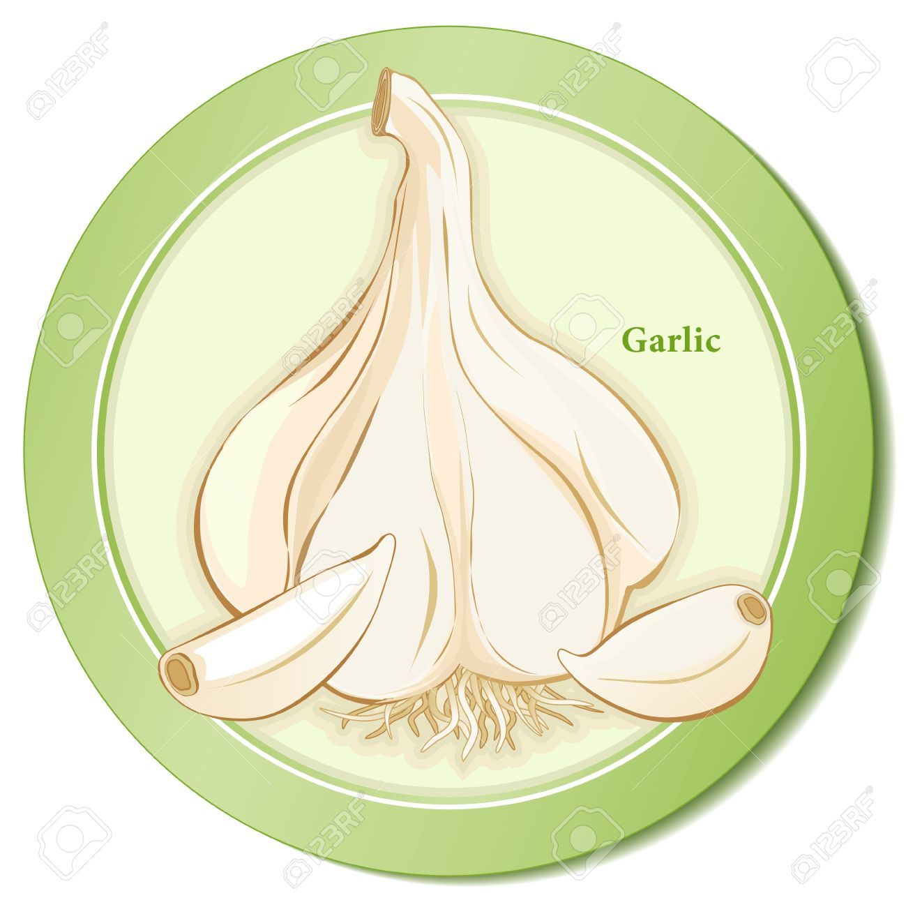 Garlic Herb Bulb And Cloves Icon Royalty Free Cliparts, Vectors.