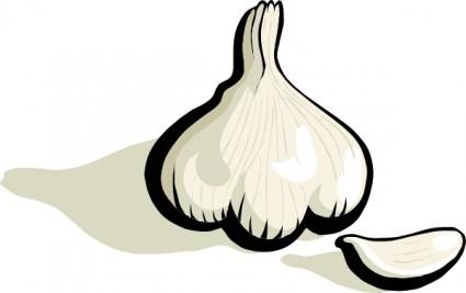 Garlic clove clipart.
