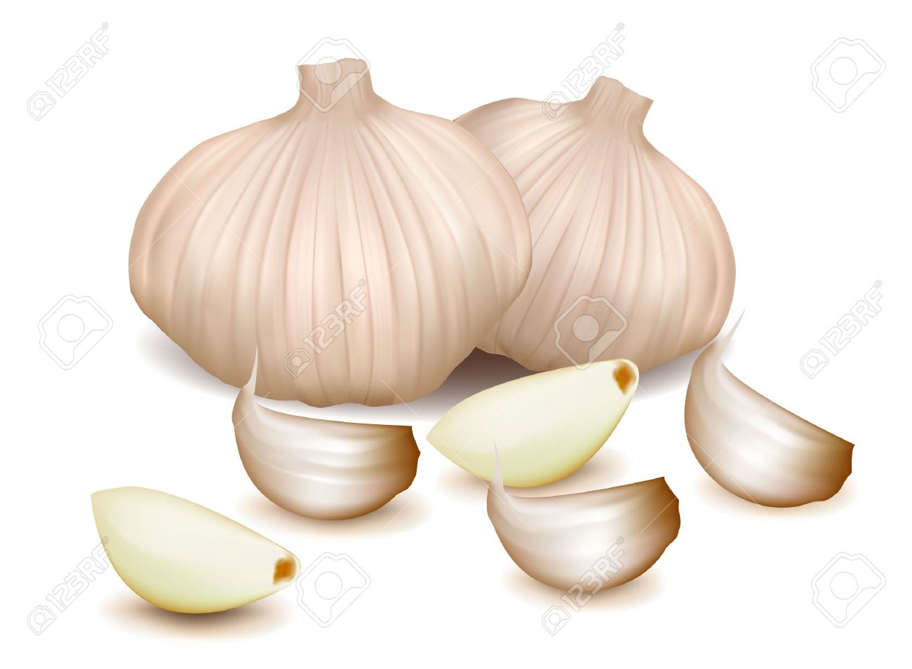 Garlic With Clove. Royalty Free Cliparts, Vectors, And Stock.