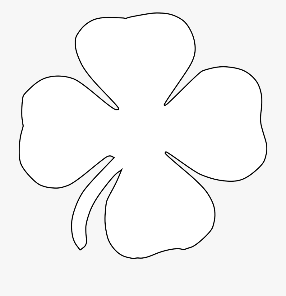 Free Image On Pixabay Four Leaf Luck.