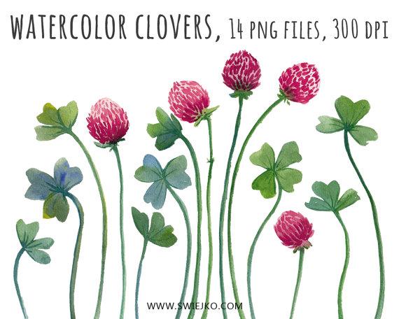 Digital Clipart Watercolor Clover Flower by SwiejkoForPrint.
