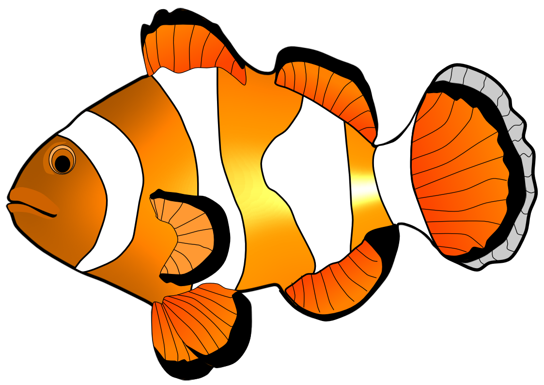 Clownfish Clipart.