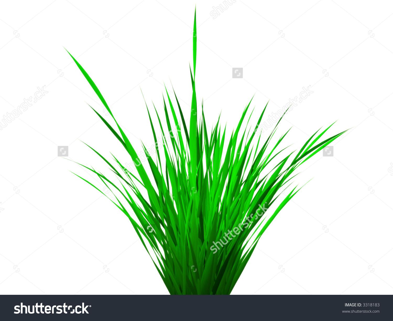 Grass Clump Stock Photo 3318183.