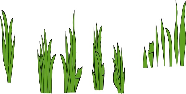 Grass Blades And Clumps clip art Free vector in Open office.