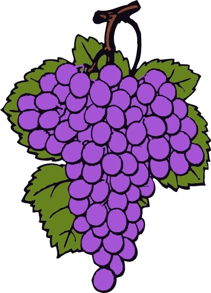 Grape Cluster clip art Free vector in Open office drawing svg.