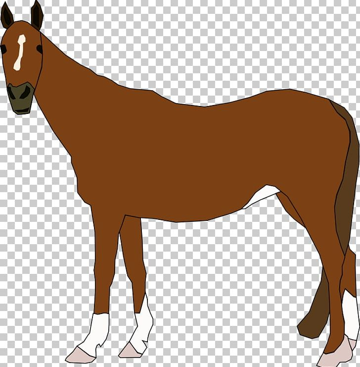 Clydesdale Horse Foal Free Content PNG, Clipart, Bridle, Clydesdale.
