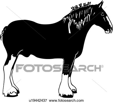 , animal, breed, clydesdale, horse, breeds, Clip Art.