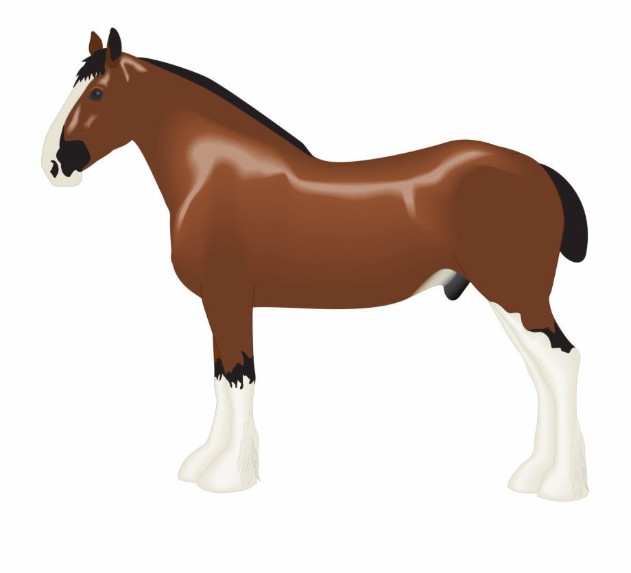 This Free Icons Png Design Of Clydesdale Horse.