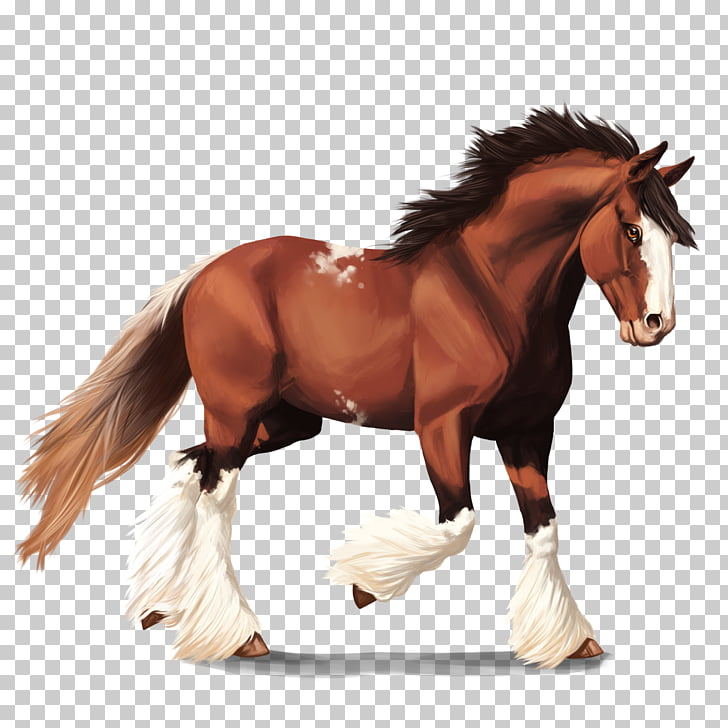 Clydesdale horse American Quarter Horse Mustang Howrse.