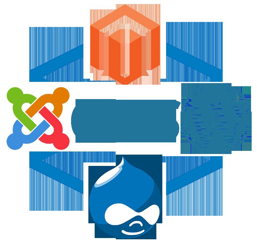 CMS Development.