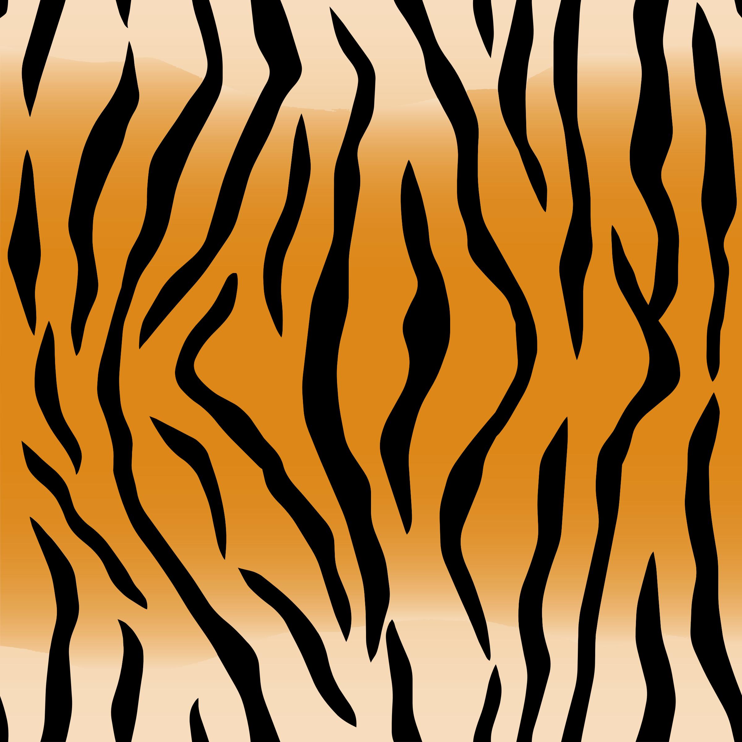 Animal Stripes Clipart.