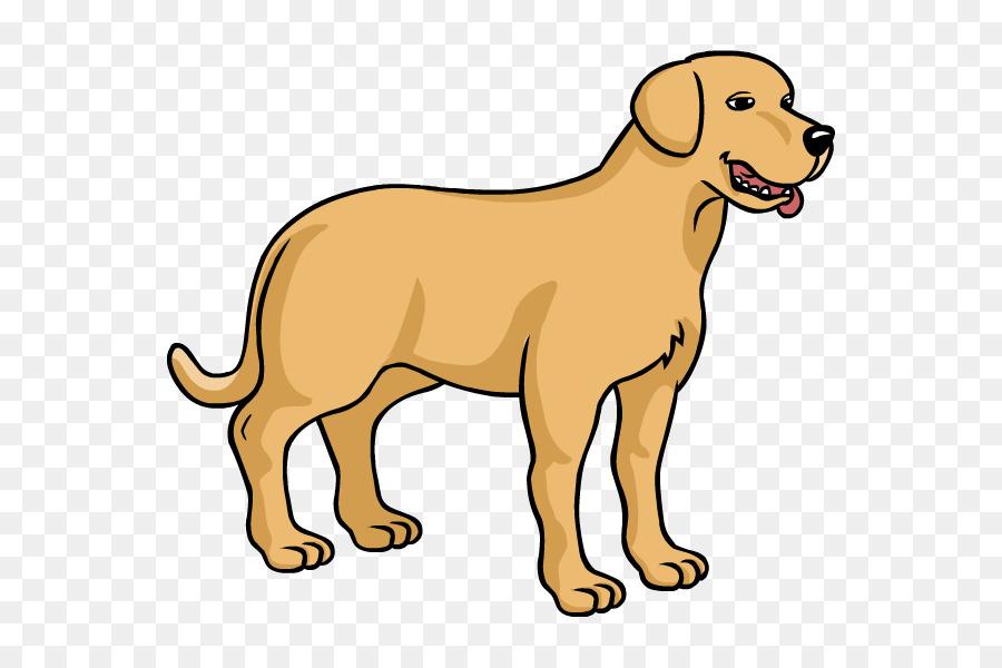 Dog breed Puppy Labrador Retriever Como Dibujar: UNA GU A.