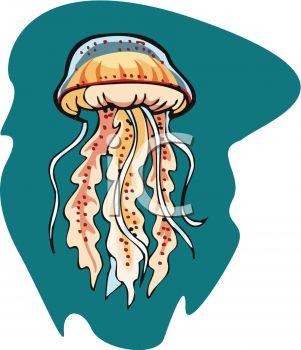 Best Jellyfish Clipart #9693.