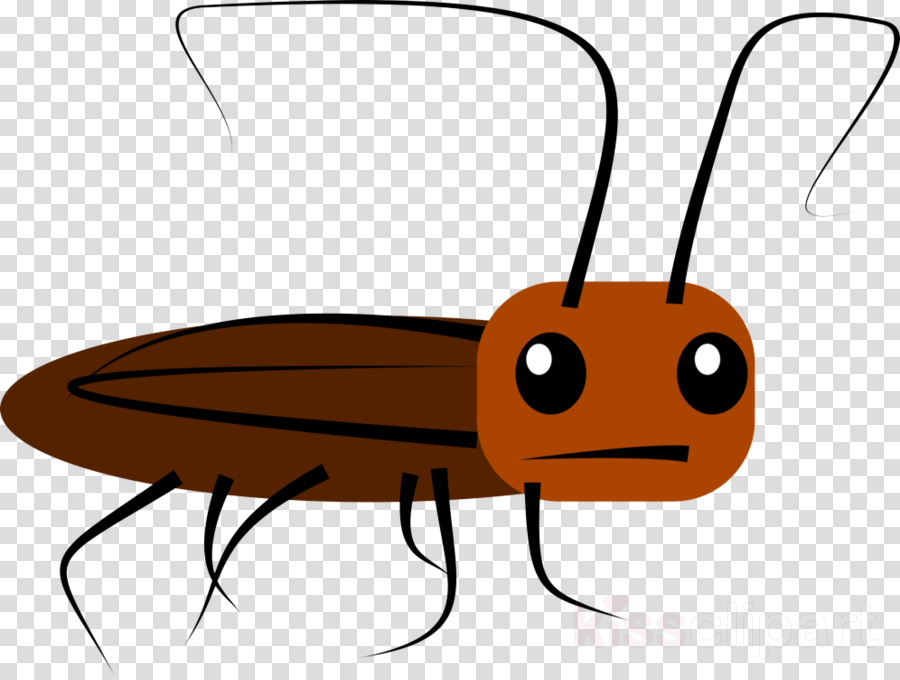 insect pest clip art membrane.