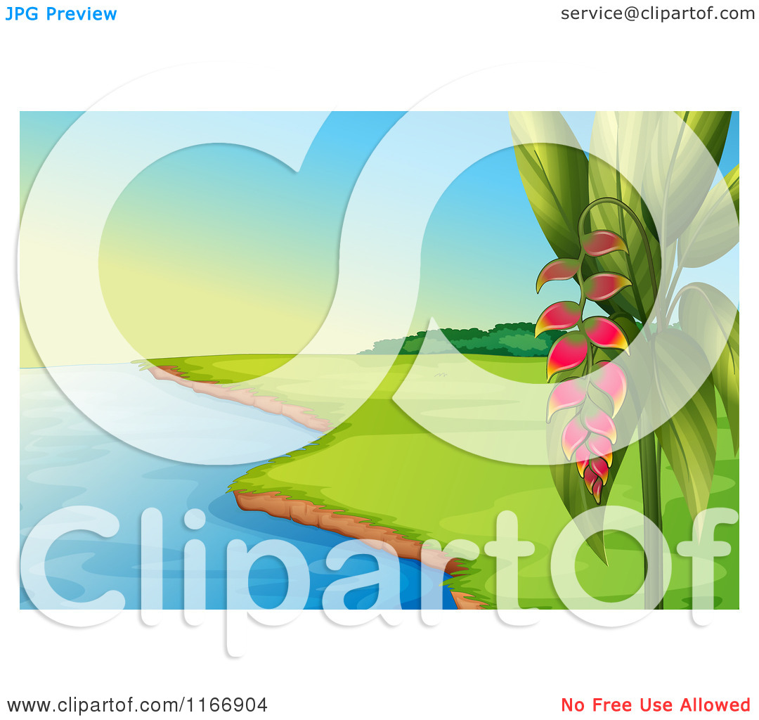 Cartoon of a Coastal Landscape and Heliconia Plant.
