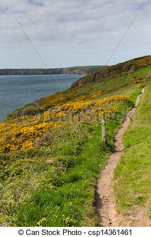 Stock Image of Wales coast path Newgale Rickets.