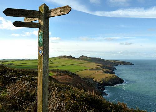 Pembrokeshire coast path.