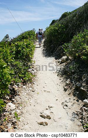 Picture of Coastal path csp10483771.
