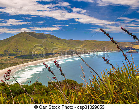 Stock Images of Coastal view Otago.