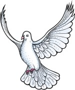 Advanced Bird Clipart for Custom Coat of Arms by The Tree Maker.