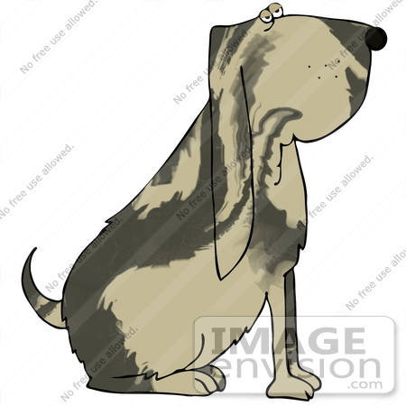 Clipart Illustration of a Marble Coated Bloodhound Doggy Sitting.