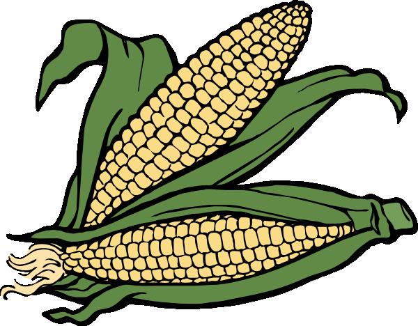 Maize cultivation clipart #5